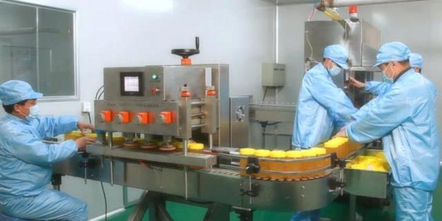 标准的专业生态工厂